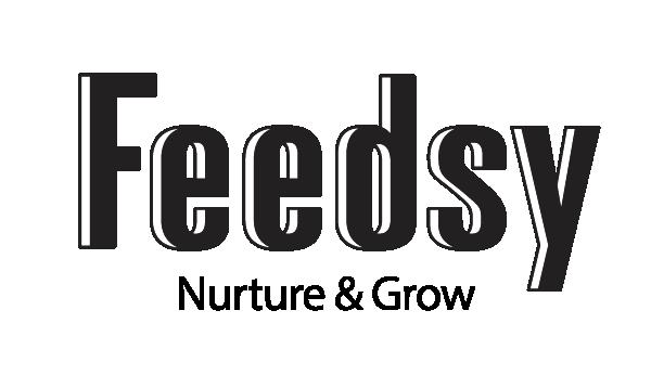 Feedsy_Logo_NnG@2x